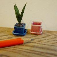 受け皿つき 角鉢(紺・ピンク)