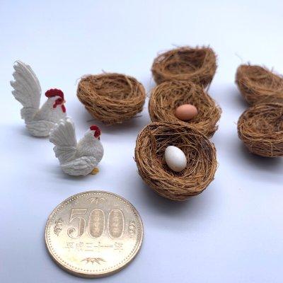 画像1: 鳥の巣