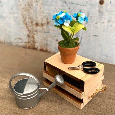 画像2: おうちでアジサイ栽培セット(ネット限定) 紫陽花 あじさい