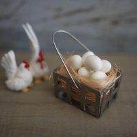 エッグバスケット たまご8個セット 卵 玉子