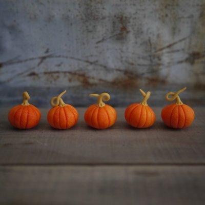 画像3: かぼちゃL ハロウィンカラー 西洋カボチャ 南瓜